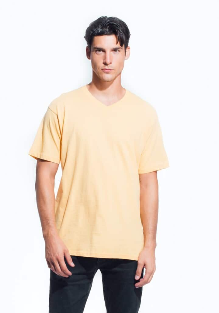 cotton heritage mens v neck tee6